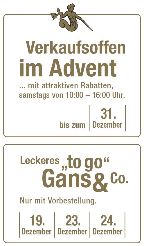 banner-12-2020-v36